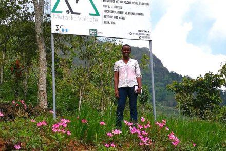 Liz Mbau, Volcafe Way Coordinator for Africa