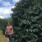 Coffee producer Marinalva Ivo as Neves, in Brazil.