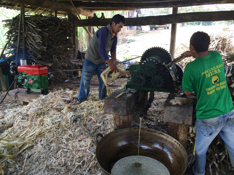 Coffee producers in Peru often still make yonke as a hobby or a side business.