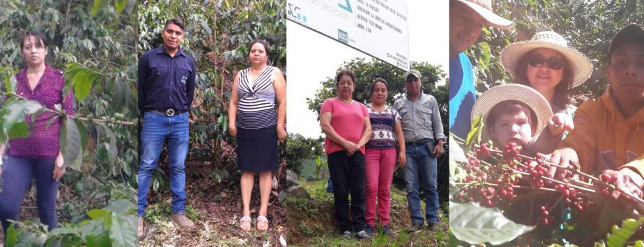 Women producers of La Morena microlot coffee 2018